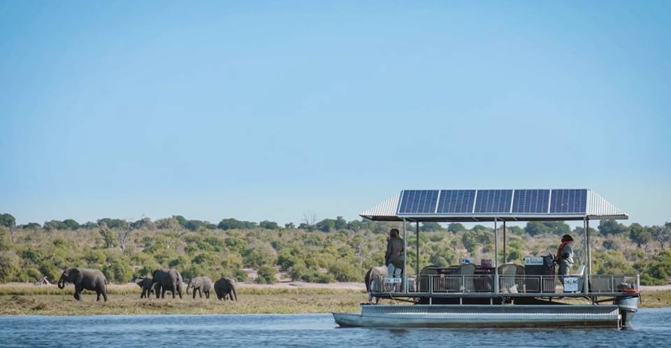 Safari responsable au Botswana ©Chobe Game Lodge