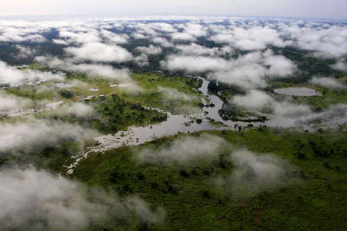 Parc National de la Garamba, l'un des 5 sites naturels en péril du Congo