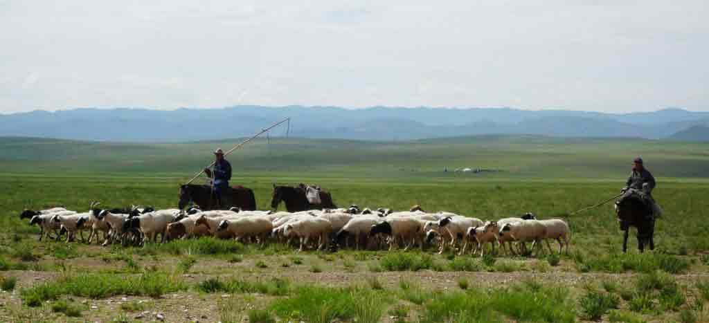 rencontre femme mongole