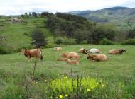 Le rôle des Parcs Naturels Régionaux