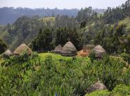 Au sud d'Addis-Abeba en Ethiopie lors d'un voyage avec Croq'Nature en 1976 ©J-LGantheil