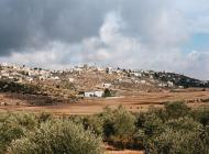 palestine_paix_paysage