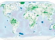 Des parcs, la planète et nous : des solutions sources d'inspiration