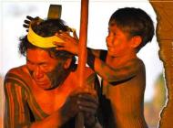 Lutte environnementale - Internationale des peuples indigènes