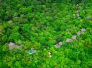 Une fôret tropicale comme maison