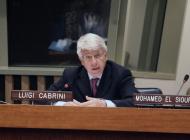 Luigi Cabrini Président du GSTC
