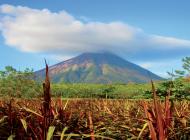 Avis de grand calme au Nicaragua ©C.Migeon