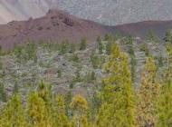 Volcan Pico Viejo Ténérife Teide