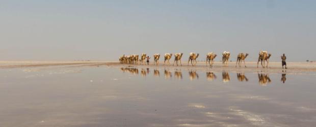 Le Lac Karoum en Ethiopie