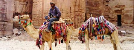 jordanie_petra_dromadaires