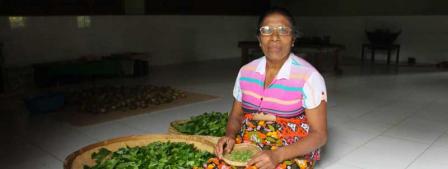 Kusuma, chef de produit de Guayapi Lanka