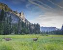 Yosemite, la force du granit ©C.Migeon