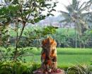 indonesie_ubud_yoga