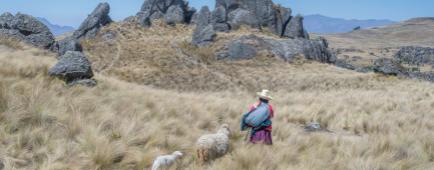 Au nord, l'autre Pérou ©C.Migeon