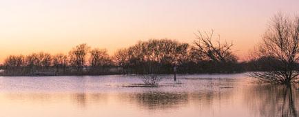 Lac de Grand Lieu, Loire-Atlantique