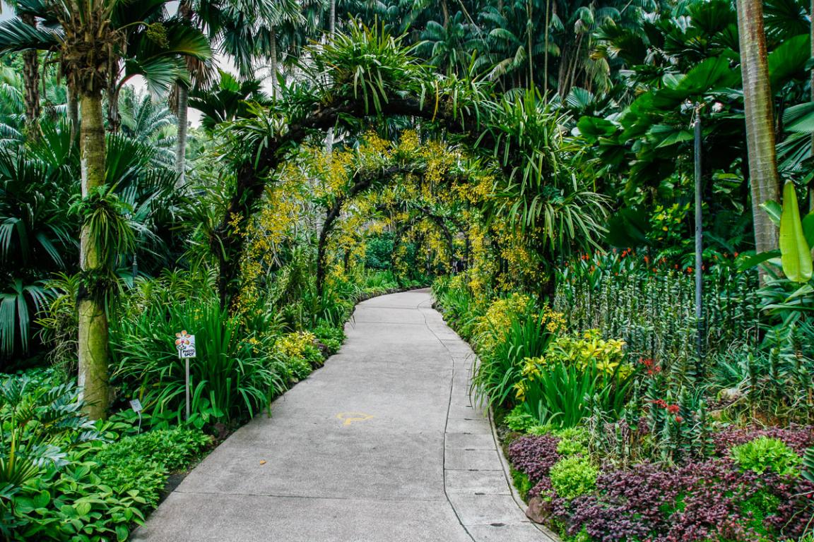 Les Botanic Garden à Singapour ©B.Cappronnier