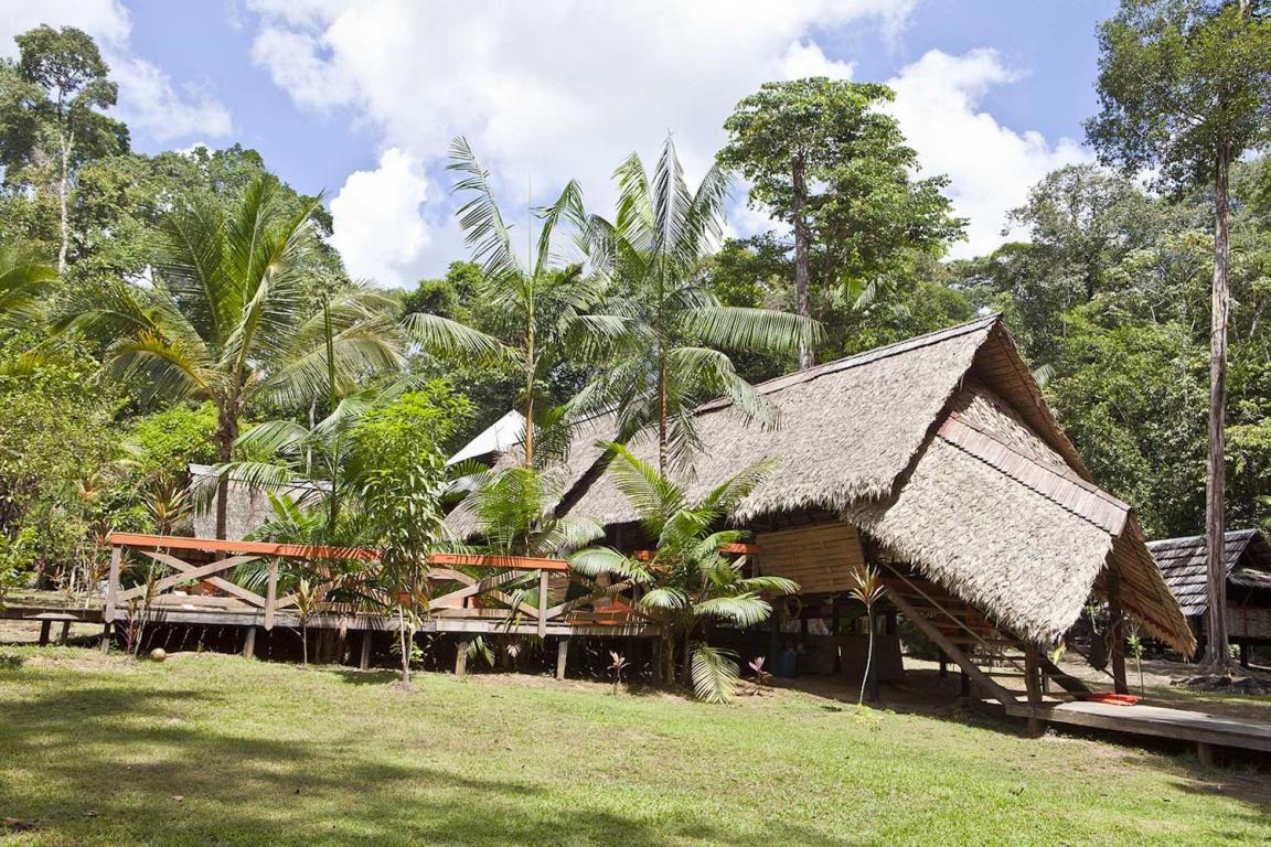 Guyane camp Cariacou