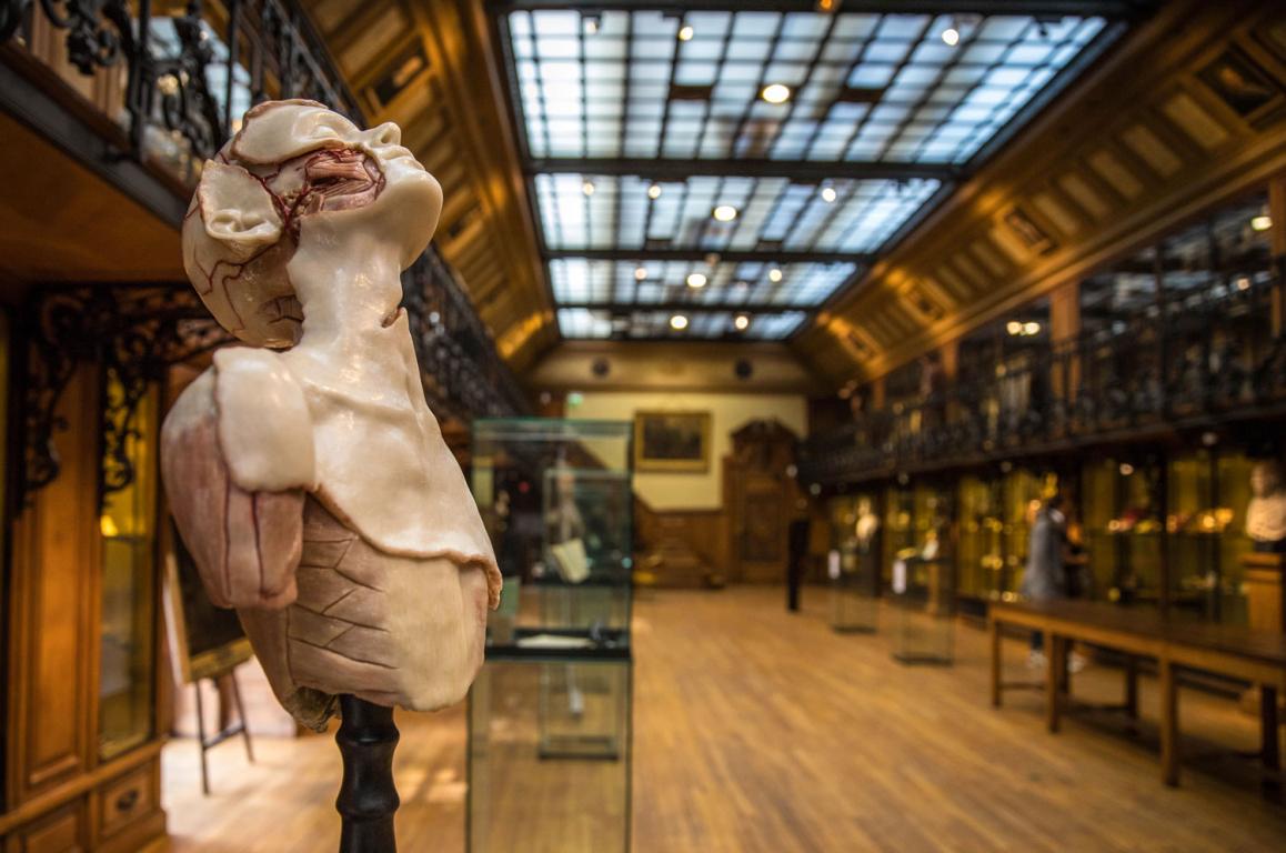 musées insolites Paris 2