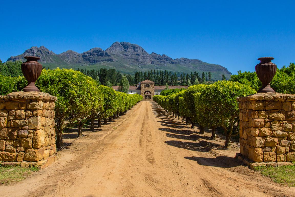 Région des Winelands ©B.Cappronnier