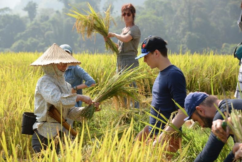 Croq'Nature - Vietnam - 2015
